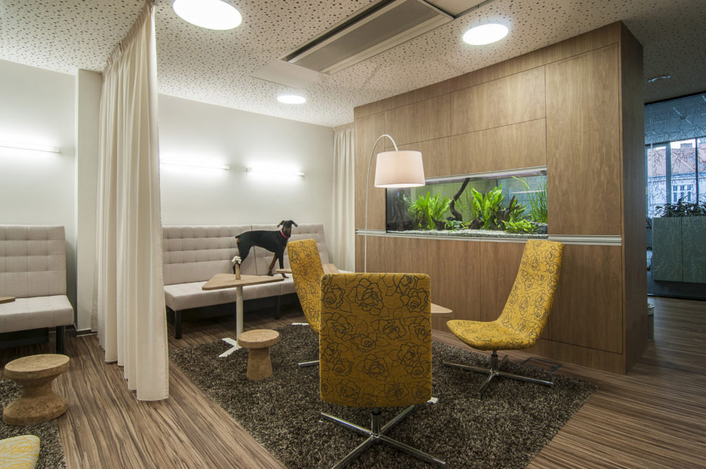 V kategorii Zdravá kancelář byla oceněna brněnská společnost KENTICO